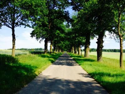 Beberbeck – Dein Weg